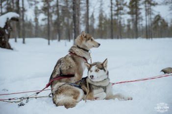 Finland Destination Wedding Igloo Hotel Photos by Miss Ann-50