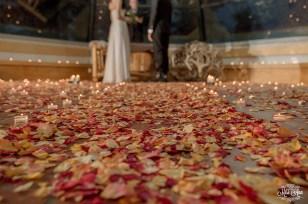 Flyboy Naturals Wedding Ceremony Photos