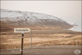 Westfjords Iceland Wedding - Iceland Wedding Planner
