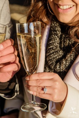 iceland-wedding-rental-champagne-glass-rental
