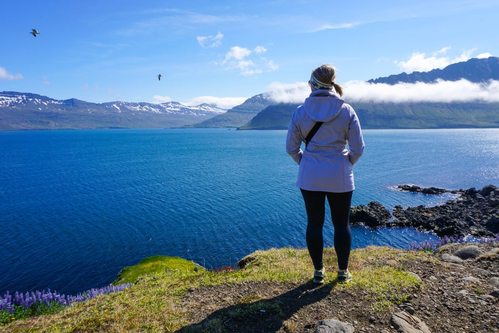 Our Life in Iceland – Month 11