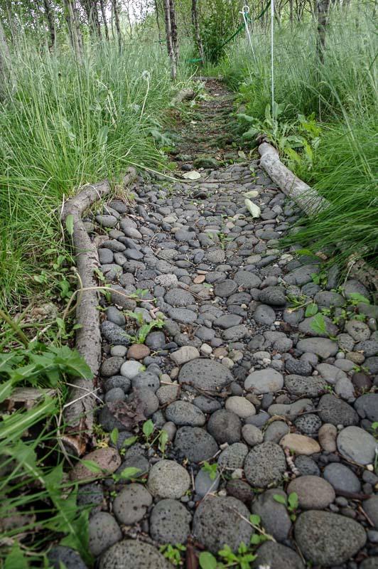 barefoot garden