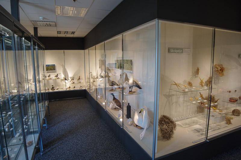 Kópavogur natural history museum