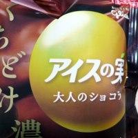 【グリコ】アイスの実 大人のショコラ 2019【コンビニ スーパー アイス レビュー】
