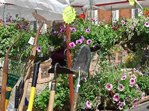 bungay-garden-market12