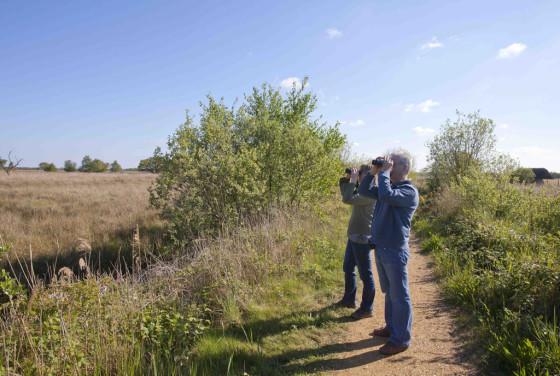 Birdwatching-in-north-Norfolk