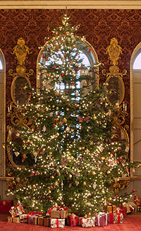 Holkham-Hall-Christmas-tree