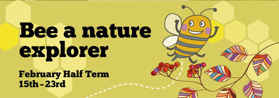 Buzz-around-at-Nature-Explorer-at-Pensthorpe