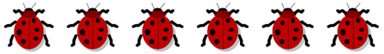 how hill ladybirds