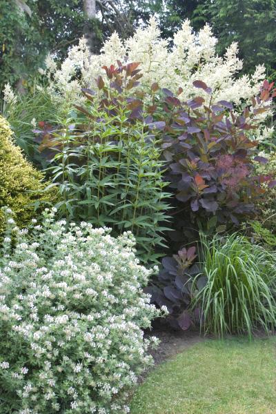 Late Summer Gardens Severals Grange