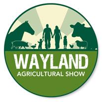 wayland-show