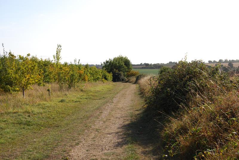 walks waveney valley