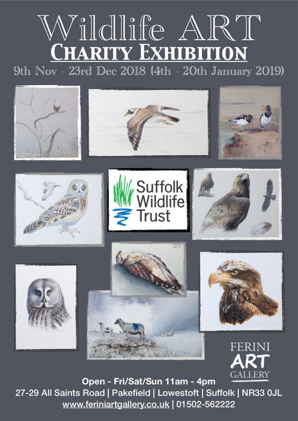Ferini Art Gallery Exhibitions Wildlife Art