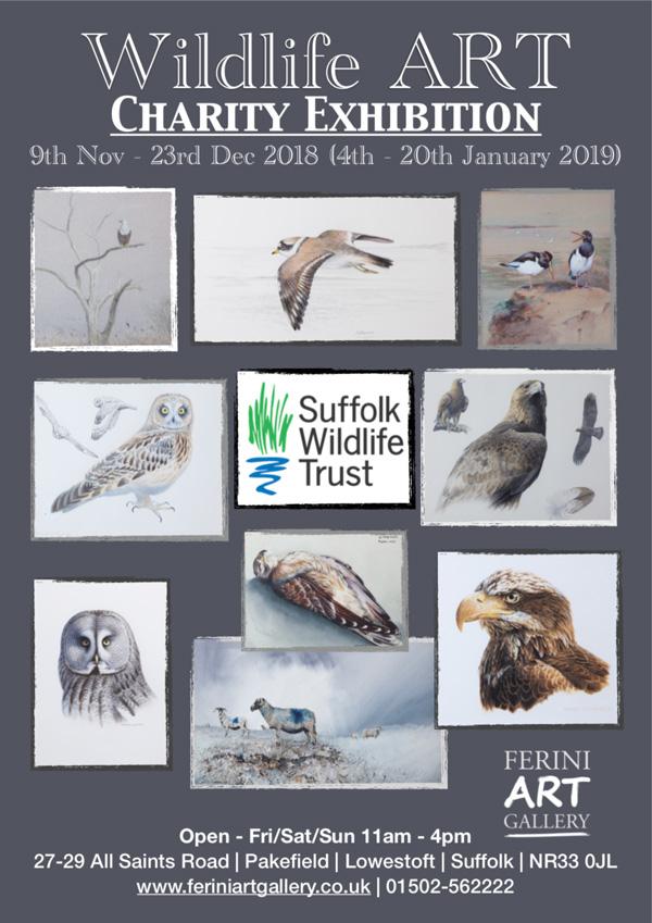 Ferini Art Gallery Exhibitions Wildlife Art