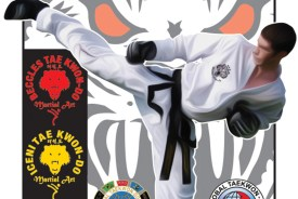 Taekwondo Summer Classes