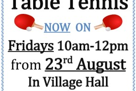 Community Table Tennis