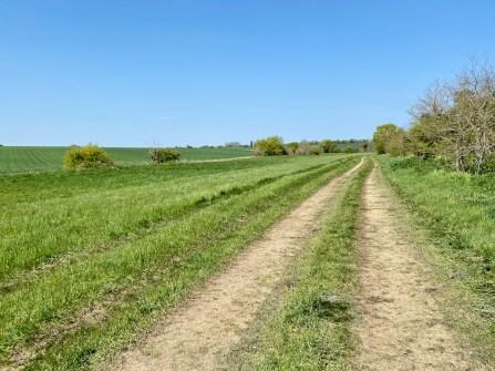 icenei Isolation Walks April 2020 - 49