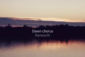Summer dawn chorus at Ranworth Broad