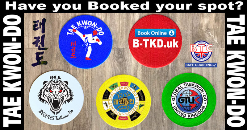 Taekwon-do Classes are BACK