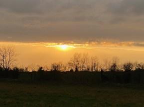 January 2021 Late winter sun in the waveney valley - 1 (1)