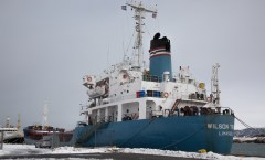 Wilson ships in Associated Icelandic Ports