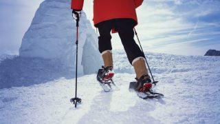 Altrendo Images/Shutterstock.com