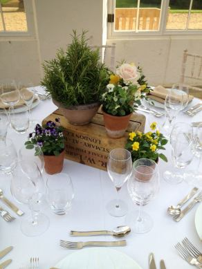 Potted plants wedding centrepiece