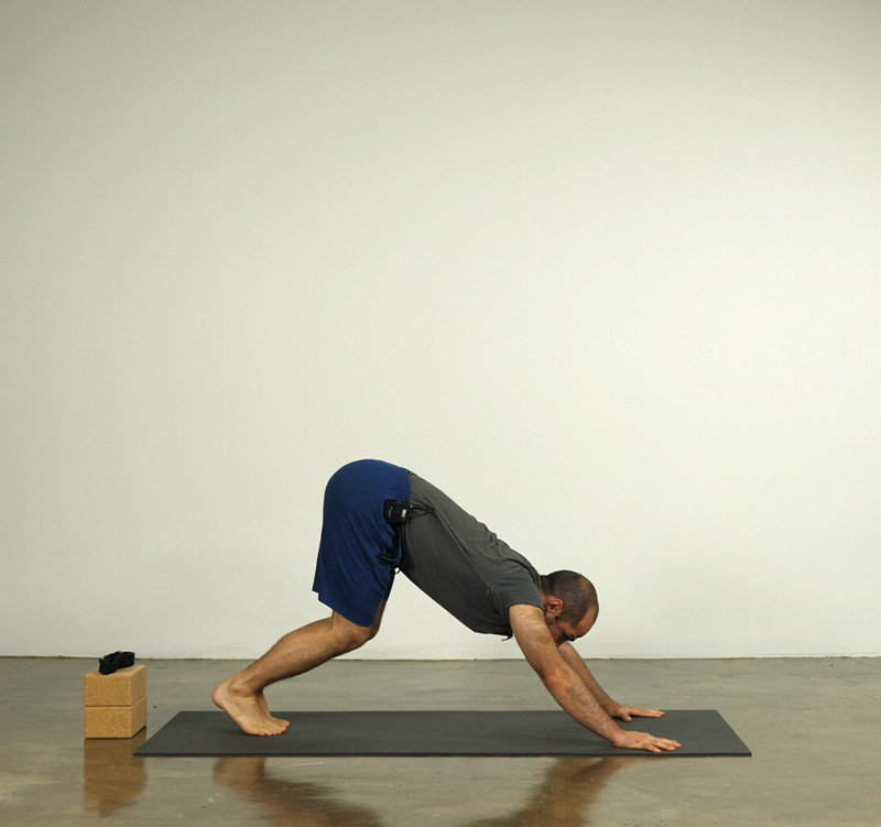 Downward Facing Dog with Bent Knees