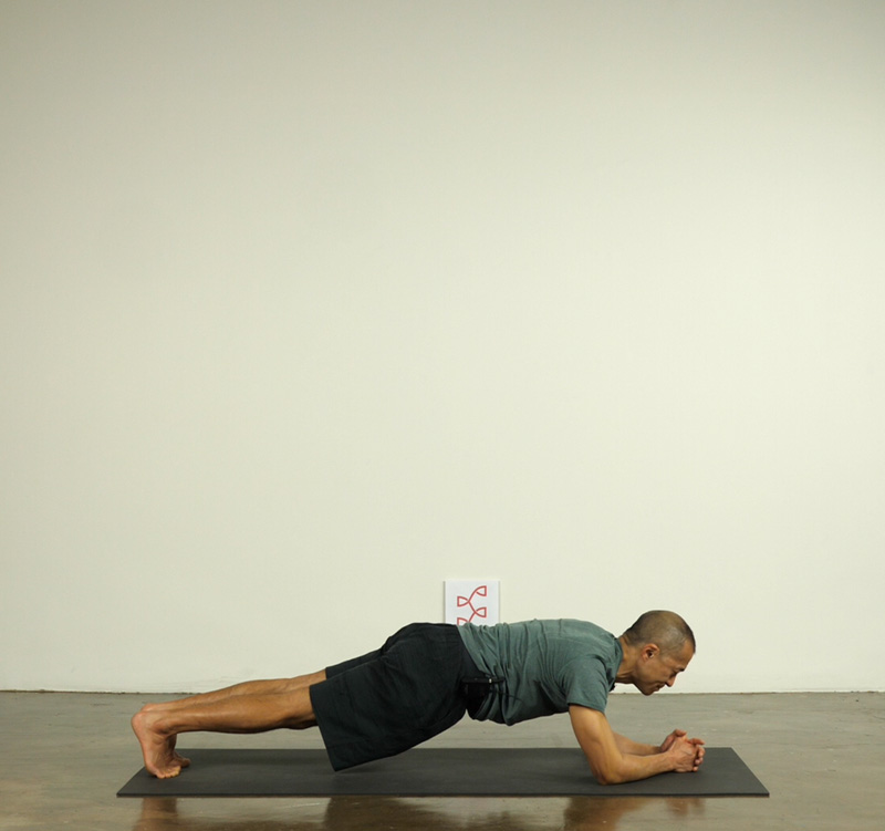 4th Universal Principle: b) Inversions and Arm Balances