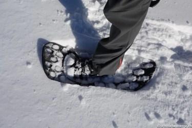 Fimbulvetr Snowshoes 06