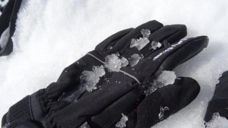 SealSkinz Activity Glove 16