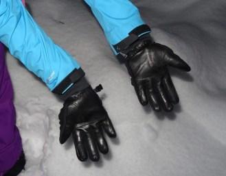 SealSkinz Activity Glove 20