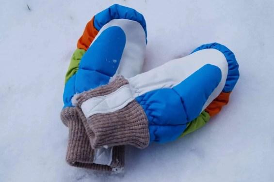 Hestra Swisswool Merino Gloves (2)