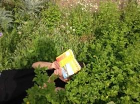 Outdoor Buch 1