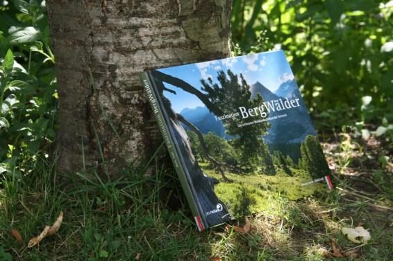 FaszinationBergwälder (3)