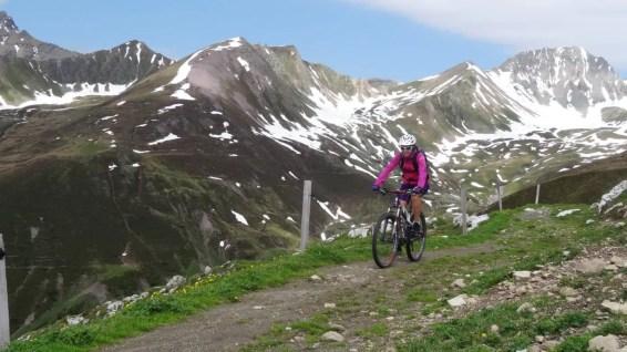 Scott Trail Mtn 20 23