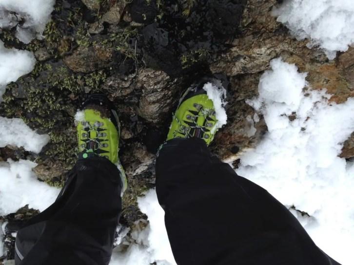 Lowa Mountain Expert GTX Evo 29