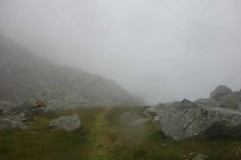 Tingle Trail Via Spluga 146