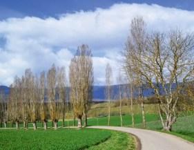 Schoenste Fruehlingstour Genusswanderung La Plaine Chancy 6