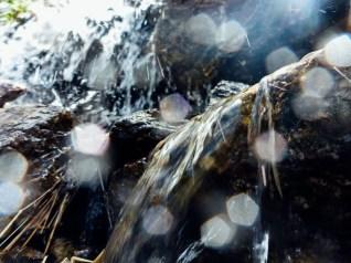 Wasseraufnahme mit der Panasonic Lumix DMC-FT5