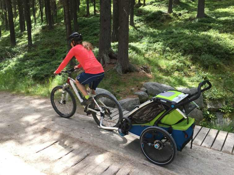 Thule Chariot Sport (38)