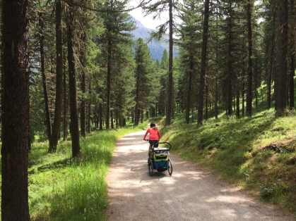 Thule Chariot Sport (39)