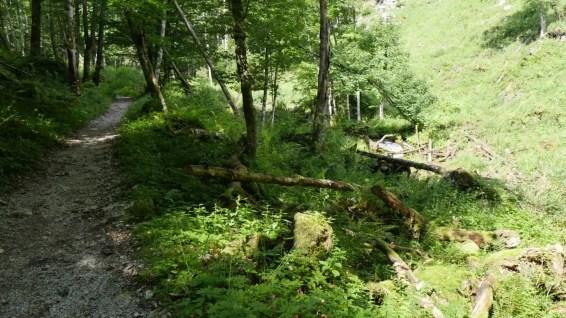40 Jahre Nationalpark Berchtesgaden 09