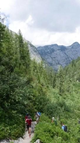 40 Jahre Nationalpark Berchtesgaden 12