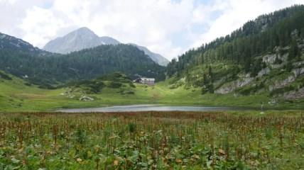 40 Jahre Nationalpark Berchtesgaden 14