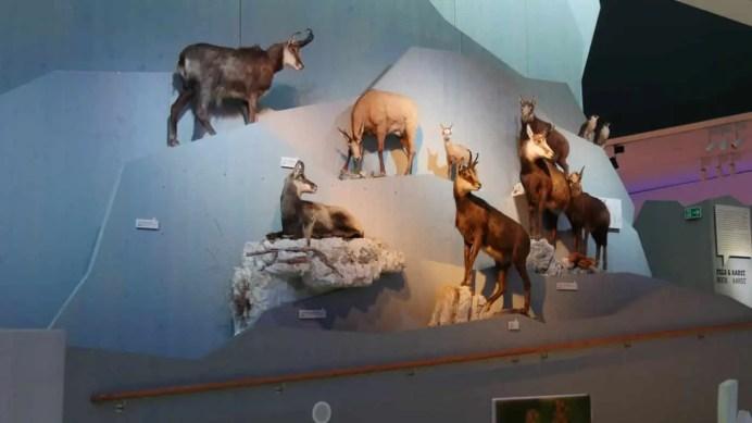 40 Jahre Nationalpark Berchtesgaden 39