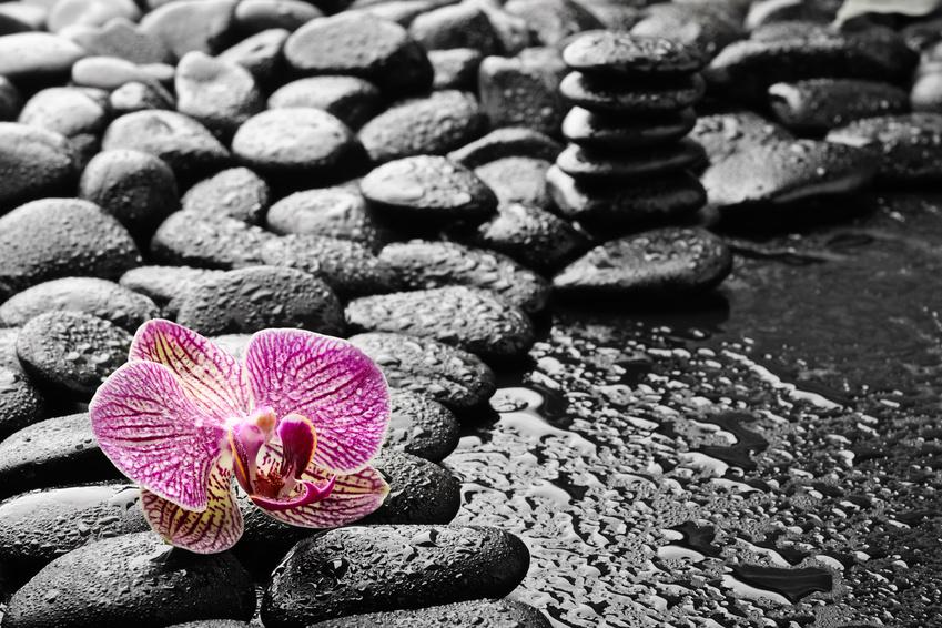 """Meditation braucht keinen """"Guru"""" -alles, was Sie benötigen, liegt bereits in Ihrem Inneren bereit."""