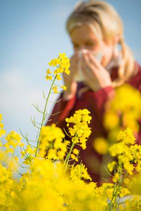 Allergien wie Heuschnupfen machen uns oft gerade im Frühjahr das Leben schwer.