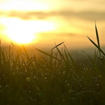 So startest du mit der Wach&Klar-Meditation am Morgen frisch in den Tag