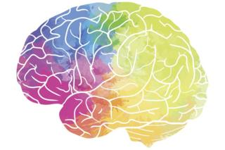 Human brain with rainbow watercolour spray on a white background